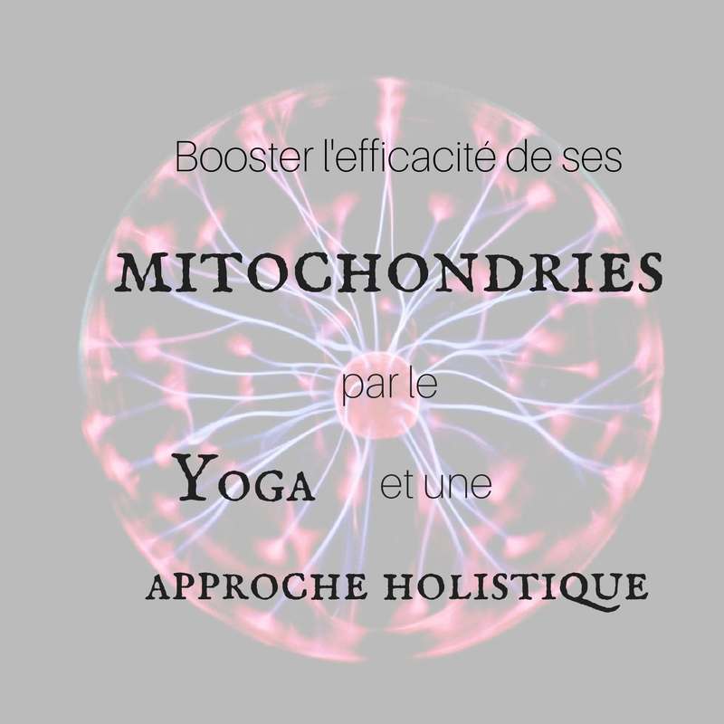 mitochondries